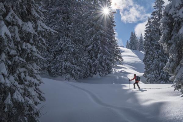 man during ski tour inzell