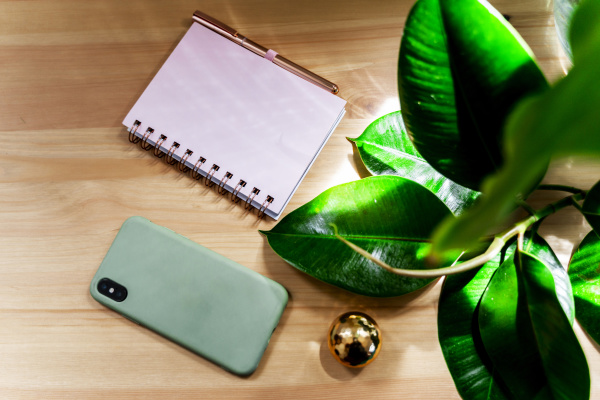 smart phone with diary and golden