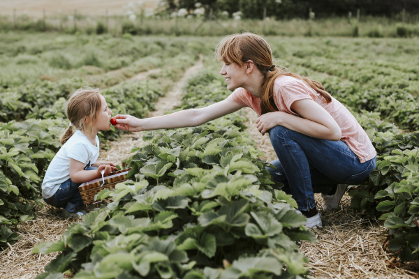 mother giving her daughter a strawberry