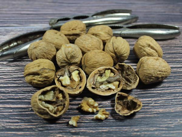 nut fruit dried fiber natural fiber
