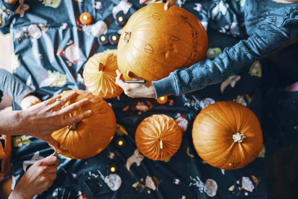 overhead view of pumpkins on a