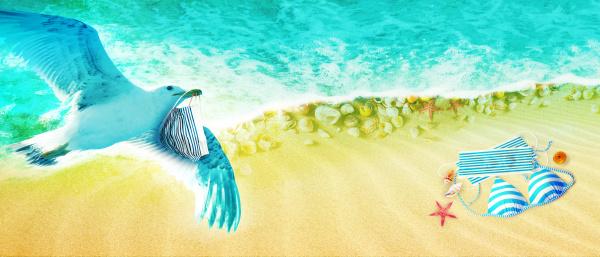 seagulls with corona virus mask flying