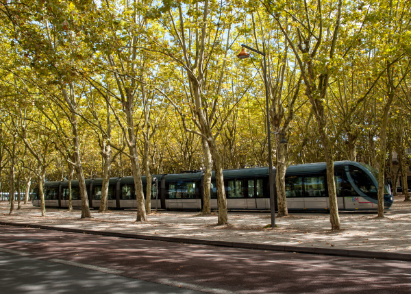 the modern tram in the french
