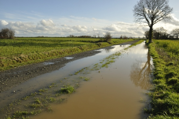 a flooded country lane in brittany