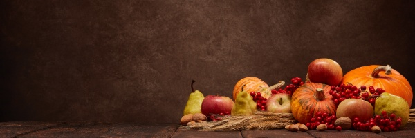thanksgiving extra wide panorama banner background