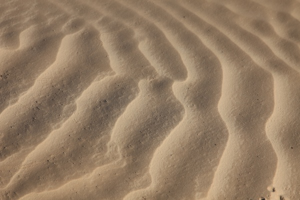 wind textures on sand in sahara