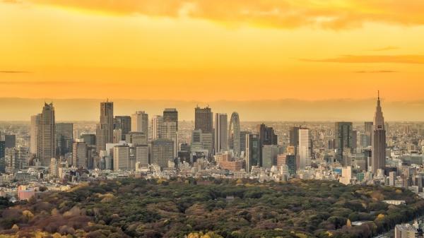 top view of tokyo city skyline