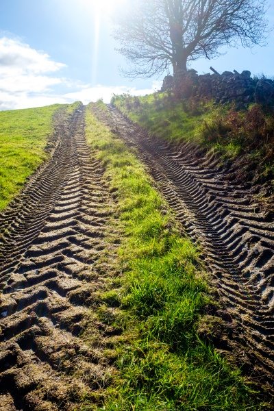 fresh tractor track in a filed