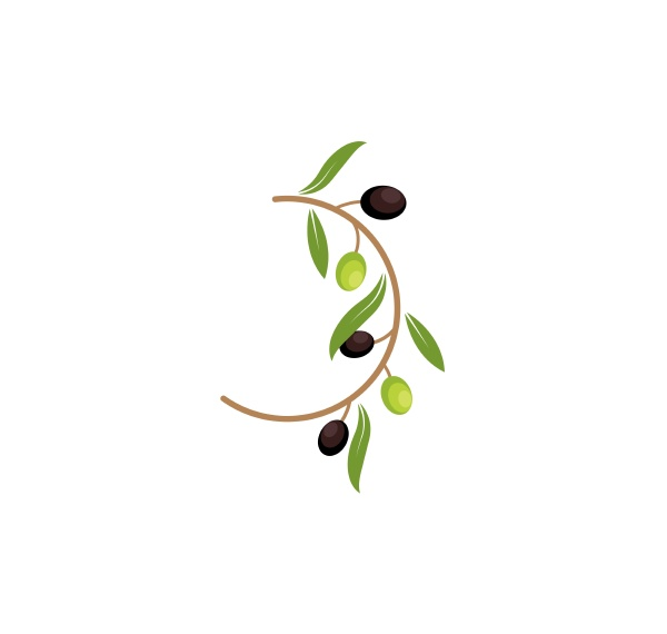 olive logo icon vector illustration