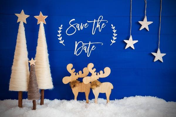 christmas, tree, , moose, , snow, , star, , text - 28937400