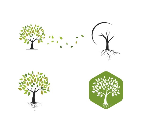 tree, icon, logo, template, vector - 28949532