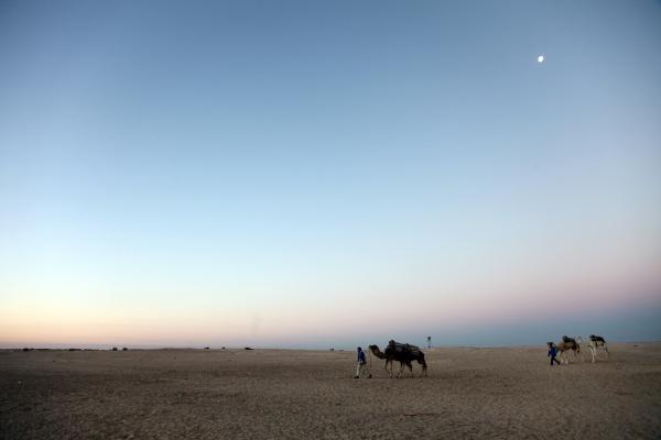 morning in sahara desert tunisia