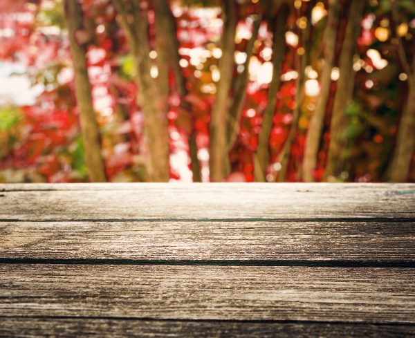 wooden board outdoors