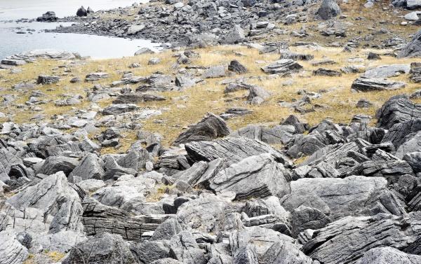 gray textured rocks among yellow grass