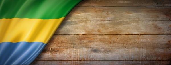 gabonese flag on vintage wood wall