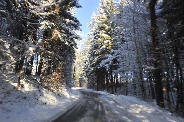 country road or rural highway in