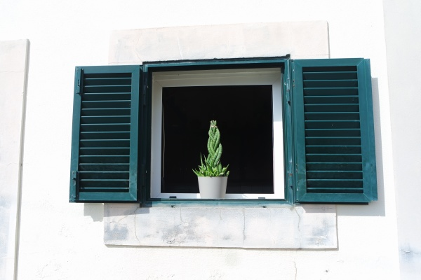windows with green shutters