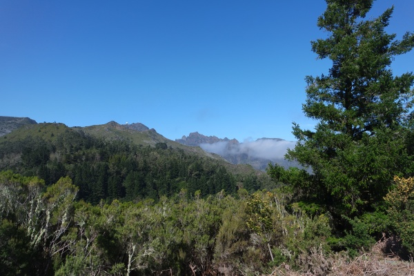 madeira view from the feiteiras plateau