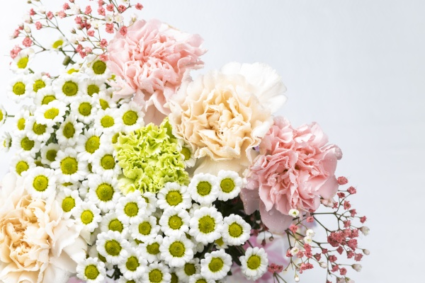 still life of flowers on white