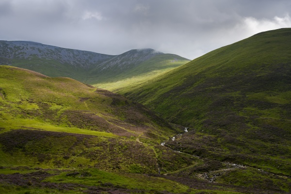 green hilly landscape of cairngorms national