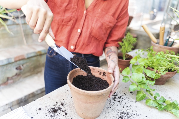 close up of woman putting soil
