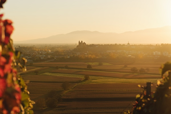 germany baden wuerttemberg view to breisach