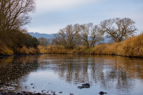 the werra river between thuringia and