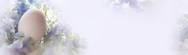 tender purple easter still life