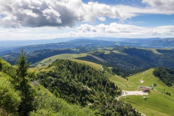 mountain landscape in summer season