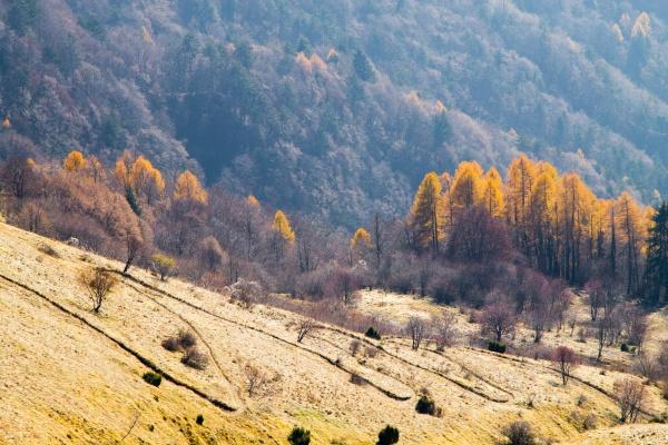 mount grappa landscape italian alps