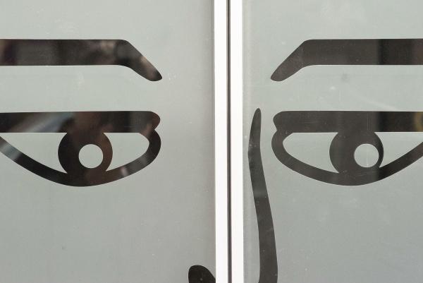 eye organ for visual perception
