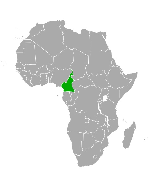 map of cameroon in africa