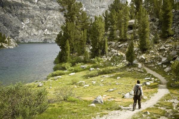 rear view of a hiker walking