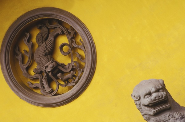 close up of the imperial lion