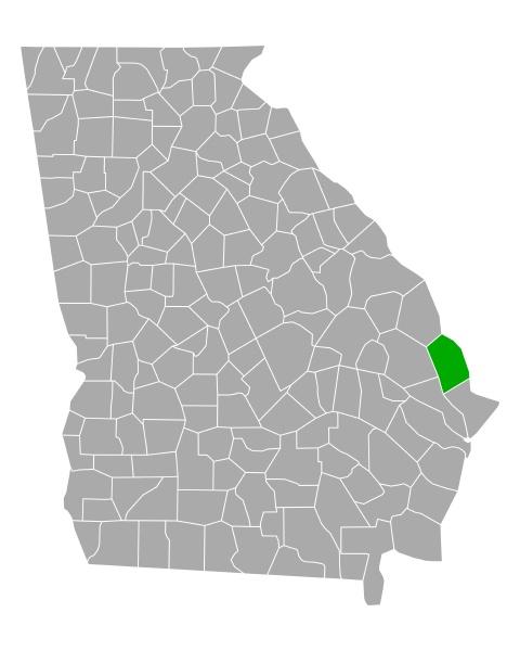 map of effingham in georgia