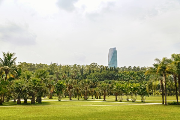 picturesque tropical park in the center