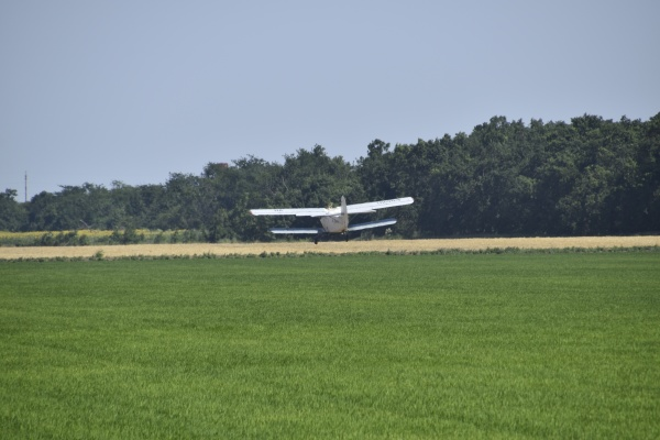 landing on the field for filling