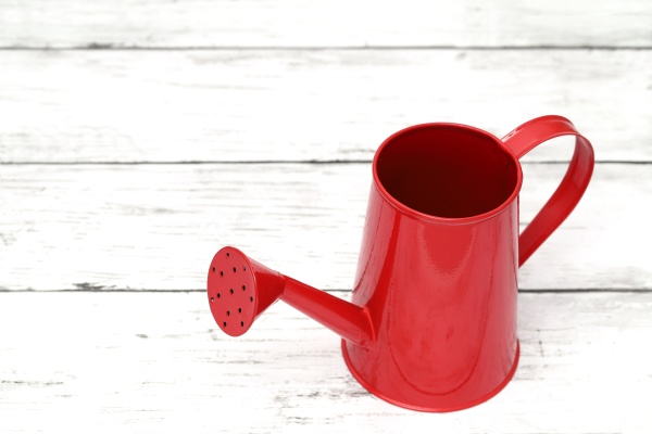 red watering can on white wooden