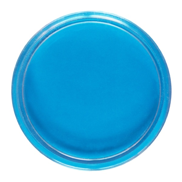 petri dish for cell culture isolated