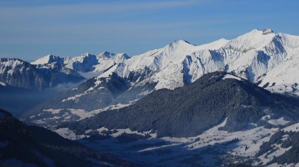 vanil noir in winter mountain