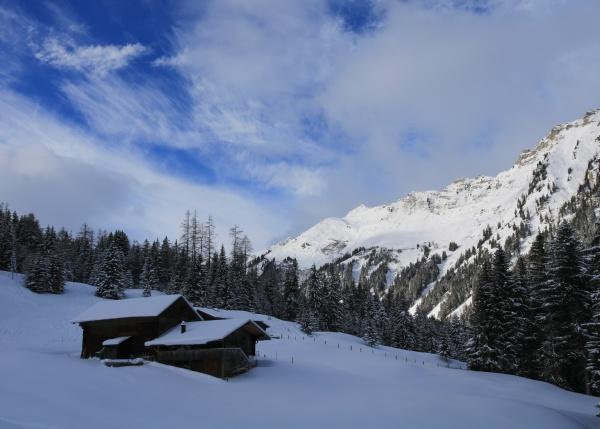 winter scene in tuxberg bernese oberland