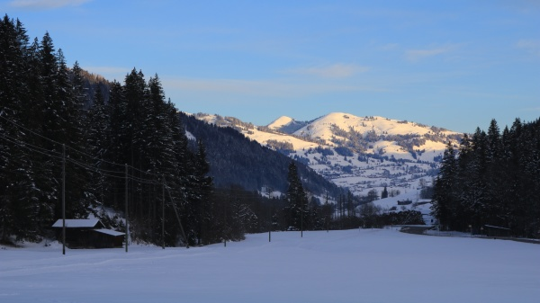 winter morning scene in the saanenland