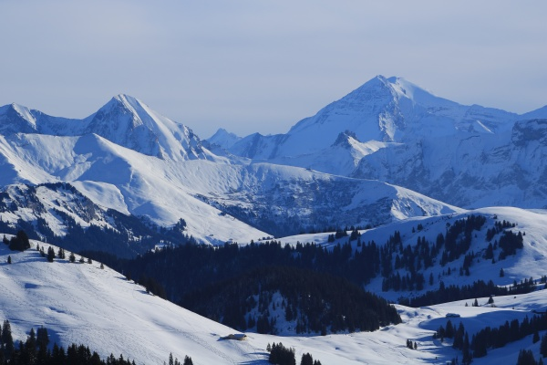high, mountains, seen, from, the, horneggli - 29673560