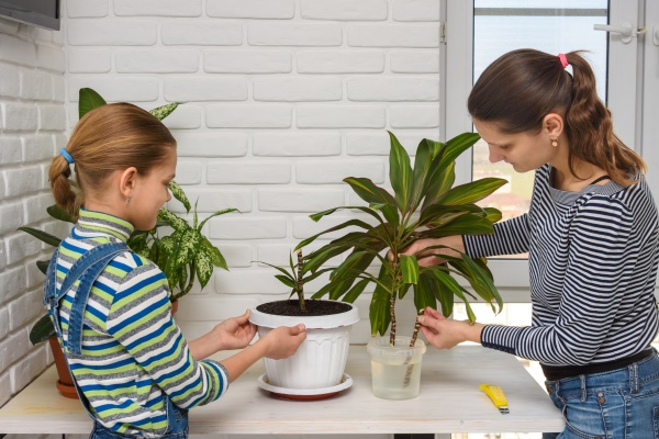 mom and daughter transplant houseplants