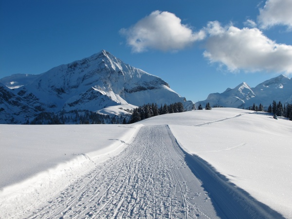 ski slope on the wispile