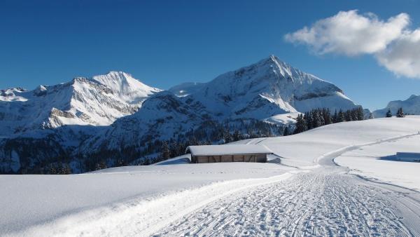 wildhorn and spitzhorn in winter