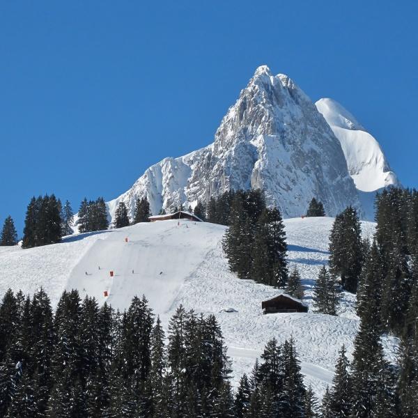 ski slope and beautiful mountain named