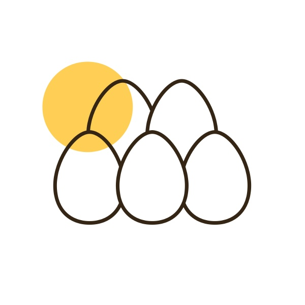 chicken eggs vector flat icon farm