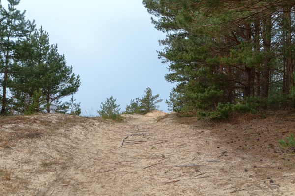 sand trail to the sea in