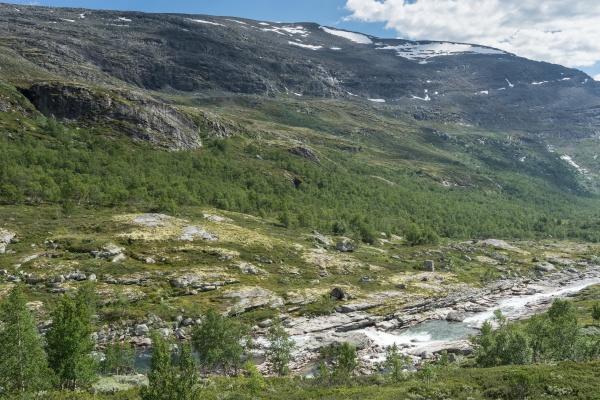 landschaft im skanmsdalsvegen im dovrefjell